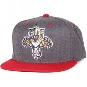 Mitchell & Ness - Florida Panthers Charcoal Dune 2 Tone Snapback