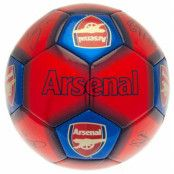 Arsenal Teknikboll Signature