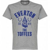 Everton T-shirt Established Grå S