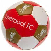 Liverpool Fotboll 3