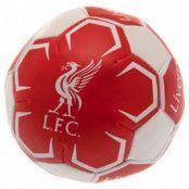 Liverpool Fotboll Mjuk M