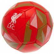 Liverpool Fotboll RX