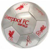 Liverpool Fotboll Signature SV