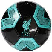 Liverpool Fotboll Tidepool