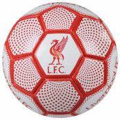 Liverpool Teknikboll DM