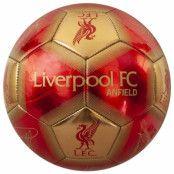 Liverpool Teknikboll Signature