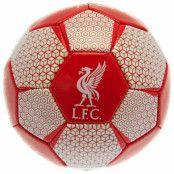 Liverpool Teknikboll VT