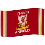 Liverpool Flagga TIA
