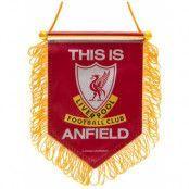 Liverpool Mini Vimpel TIA