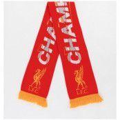 Liverpool Halsduk League Champions 19/20