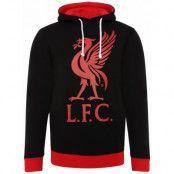 Liverpool Huvtröja Liverbird Svart S
