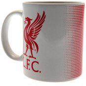 Liverpool Mugg HT