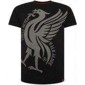 Liverpool T-shirt Liverbird Ynwa Tee Black S