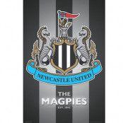 Newcastle United Affisch Crest 41