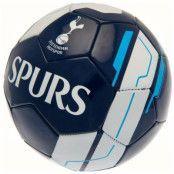 Tottenham Hotspur Fotboll VR