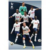 Tottenham Hotspur Affisch Players 5